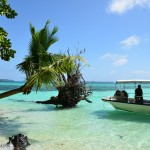 フィリピン、セブ島留学。夢の様な日々でした…!