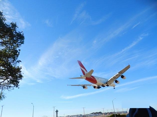 kanarazu+ikitai+LA+airplane+park
