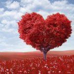 【みんな大好き】恋愛コラムを読むのにピッタリな英語サイトを大紹介