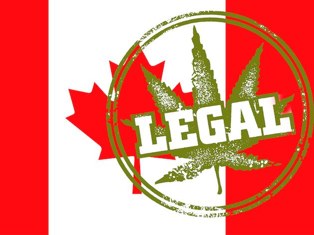 先進国初!カナダのマリファナ合法化について考える