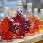 カナダの銘品 メープルシロップの秘密