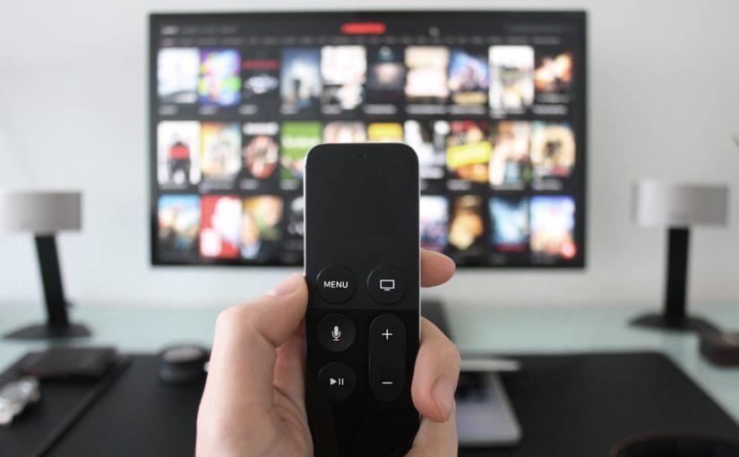 Netflix 大人向けアニメ「ボージャックホースマン」で英語を学ぼう。