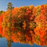 カナダの大自然を堪能!紅葉見所スポット